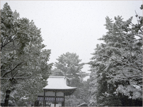 cu18-3-kyoto2010.jpg
