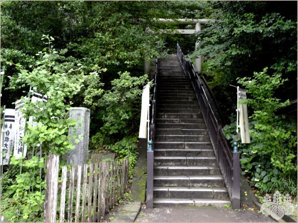 鎌倉『法華堂跡』に続く階段