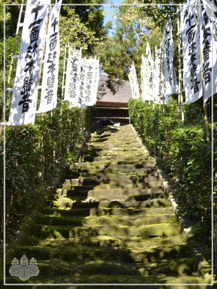 『杉本寺』